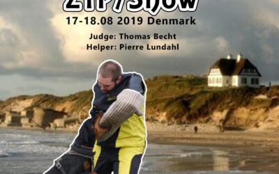 ZTP/Udstilling / ZTP/ Show 17-18/2019-Kammeratskabsaften/Dinner